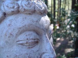 Buddha meditates