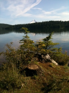 20140730_TimothyLakeTrip (75)