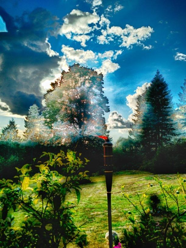 photography_landscape-5